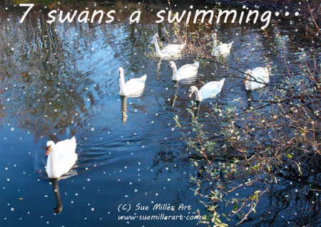 7 SWANS SWIMMING WITH SNOW