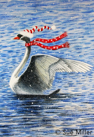 The Winter Swan
