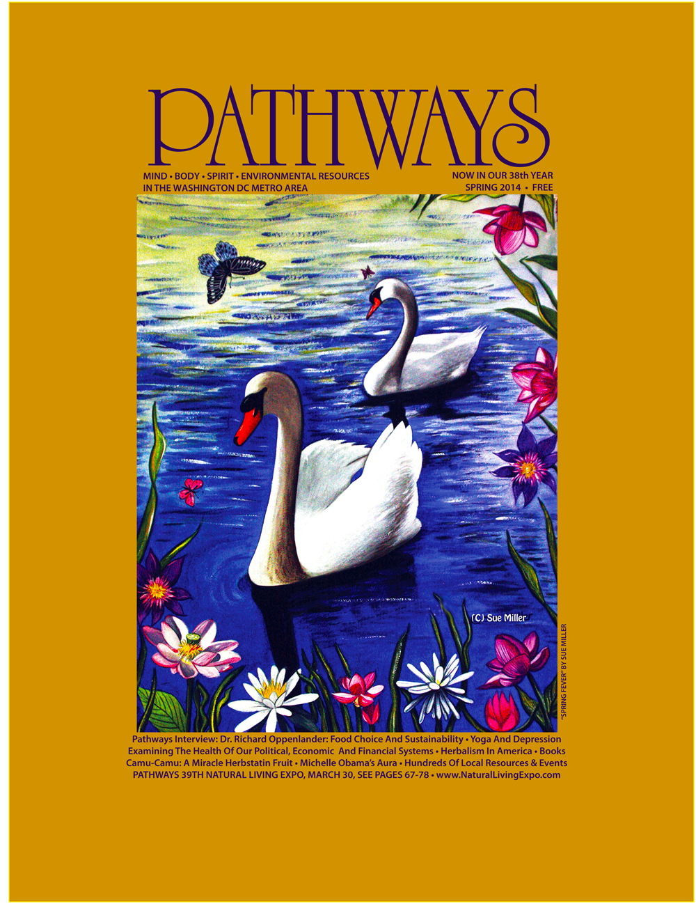 PathwaysmagazinejpegSpring2014
