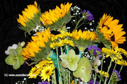 Flowers 6
