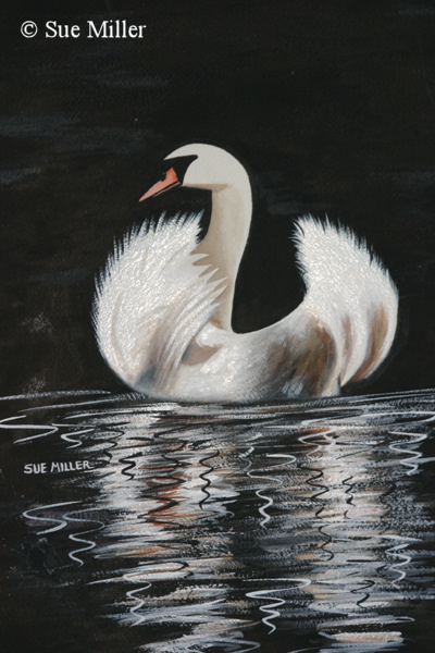 The Marbled Swan  Print