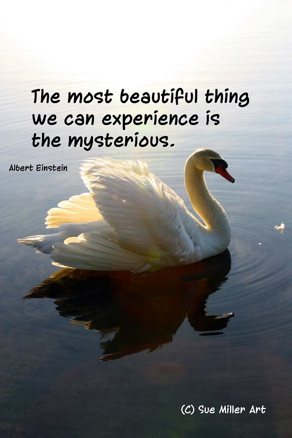 THE MYSTERIOUS THINGS IN LIFE..