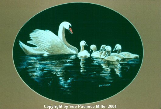 Mother and Cygnets Print